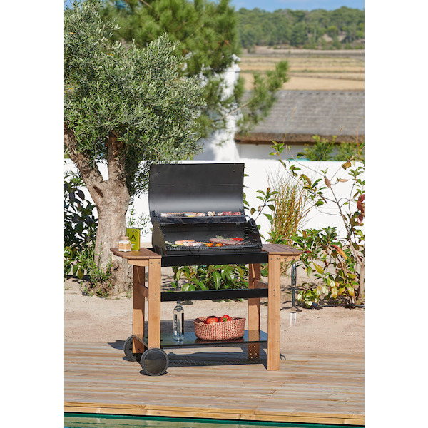 Barbecue C80 hyba 3292193100927